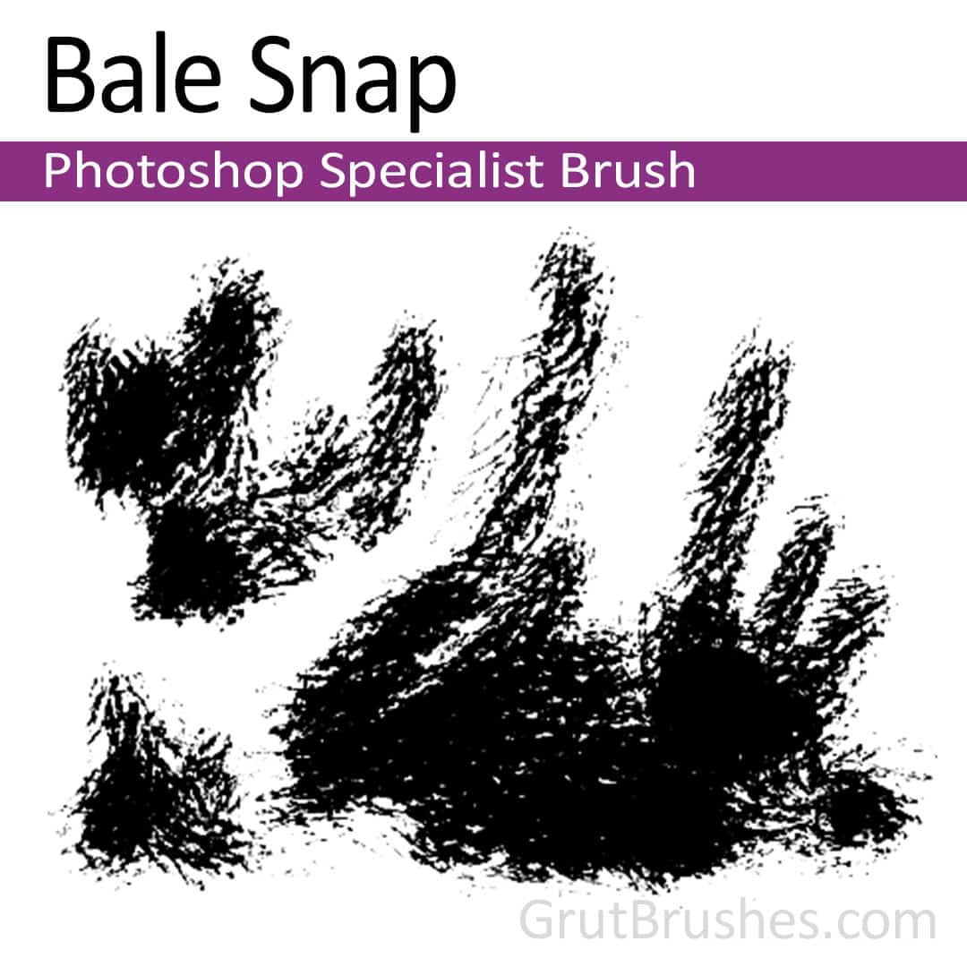 Bale-Snap-Specialist-Photoshop-Brush