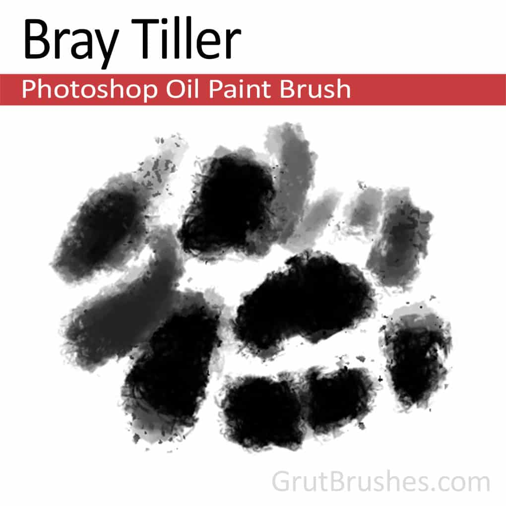 Photoshop Oil Brush for digital artists 'Bray Tiller'