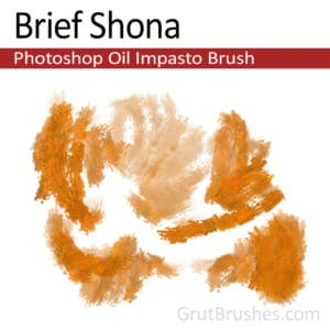 'Brief Shona' Impasto Impasto Oil Photoshop Brush