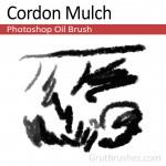 Cordon-Mulch-Photoshop-Oil-Brush