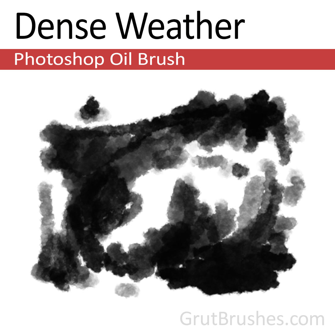 'Dense Weather' Photoshop oil brush for digital painting