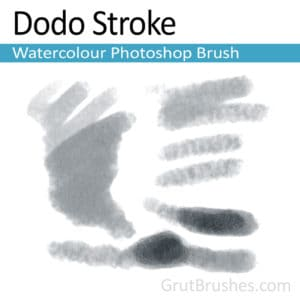 'Dodo Stroke' Photoshop Watercolor Brush for digital artists