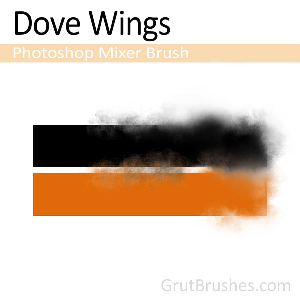 Photoshop Mixer Brush for digital artists 'Dove Wings'