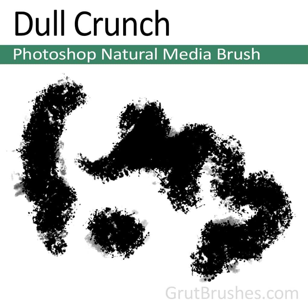 Photoshop Natural Media Brush for digital artists 'Dull Crunch'