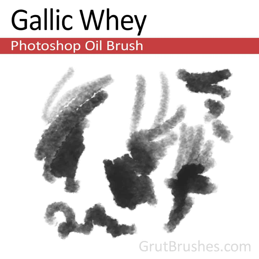 'Gallic Whey' Photoshop Oil Brush for digital artists