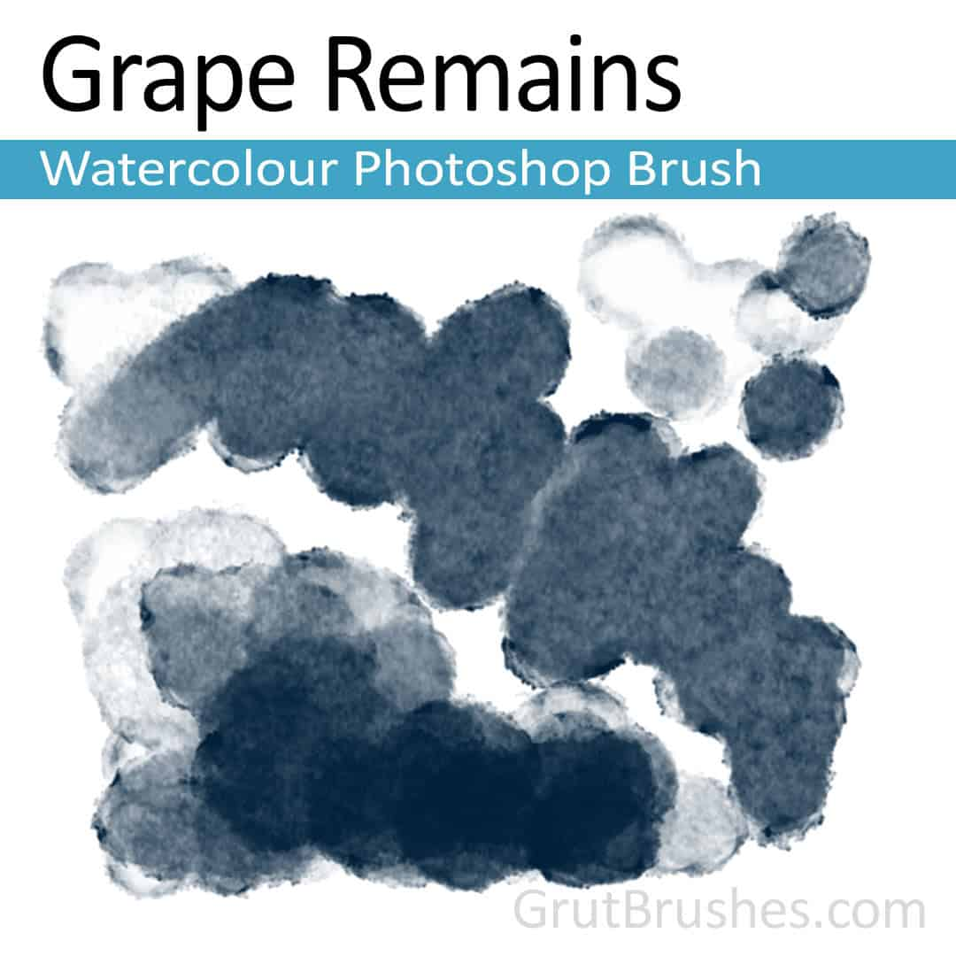'Grape Remains' Photoshop watercolor brush for digital painting