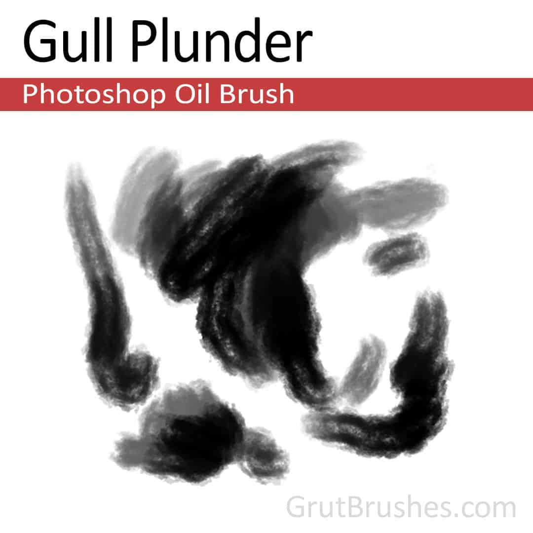 Gull Plunder - Photoshop Oil Brush