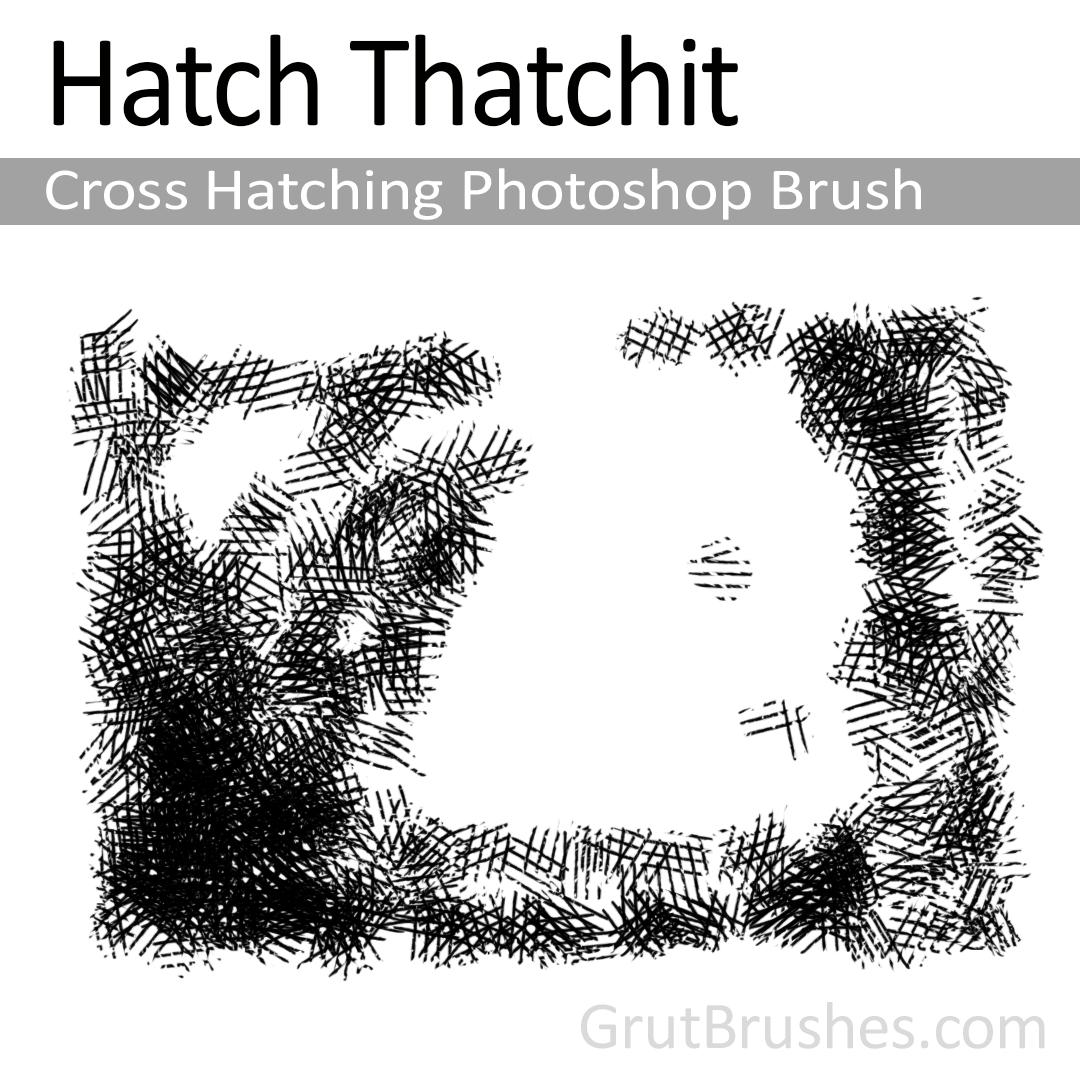 Hatch-Thatchit---Photoshop-Brush