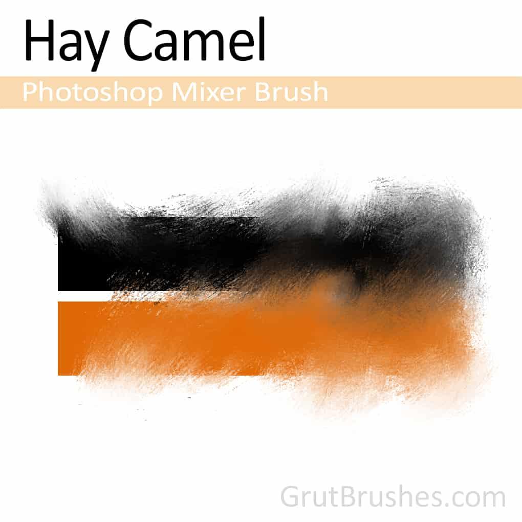 Hay-Camel-Photoshop-Mixer-Brush