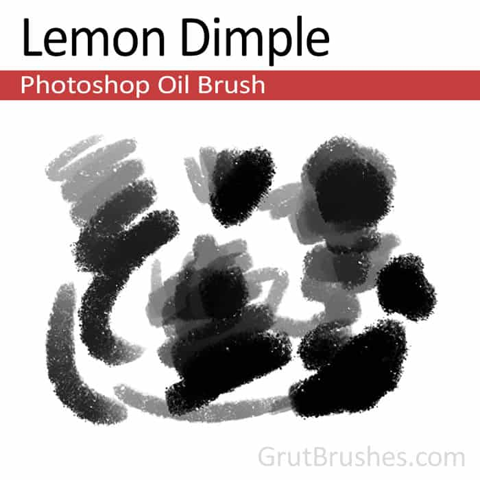 'Lemon Dimple' Photoshop oil brush for digital painting