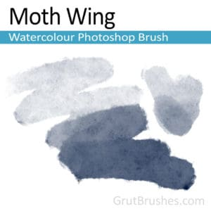 Pressure sensitive digital Photoshop watercolour brush for digital artists