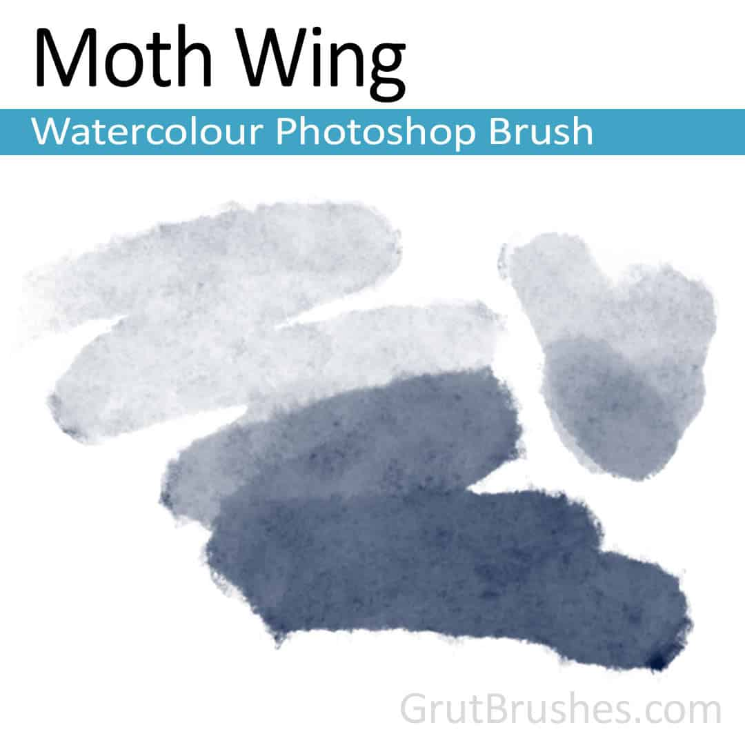 'Moth Wing' Photoshop watercolor brush for digital painting