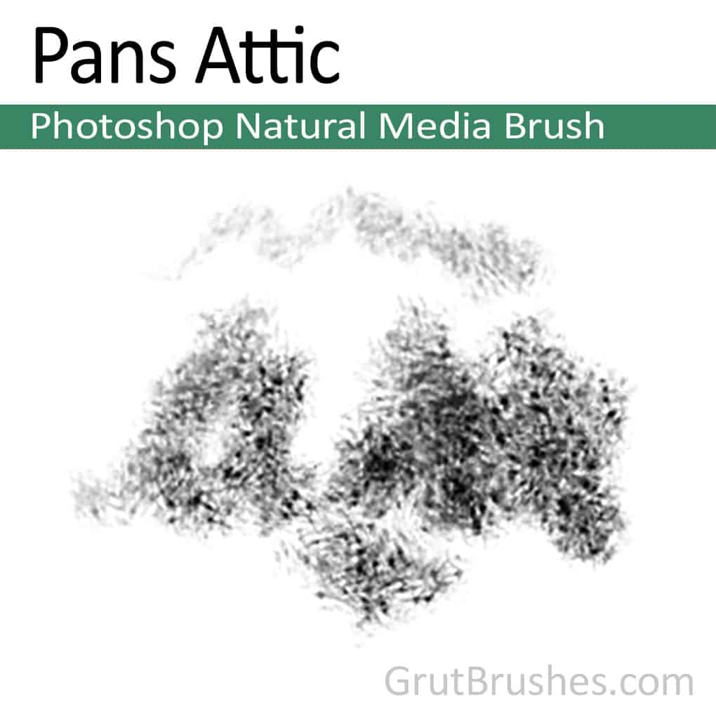 Photoshop Natural Media Brush for digital artists 'Pans Attic'