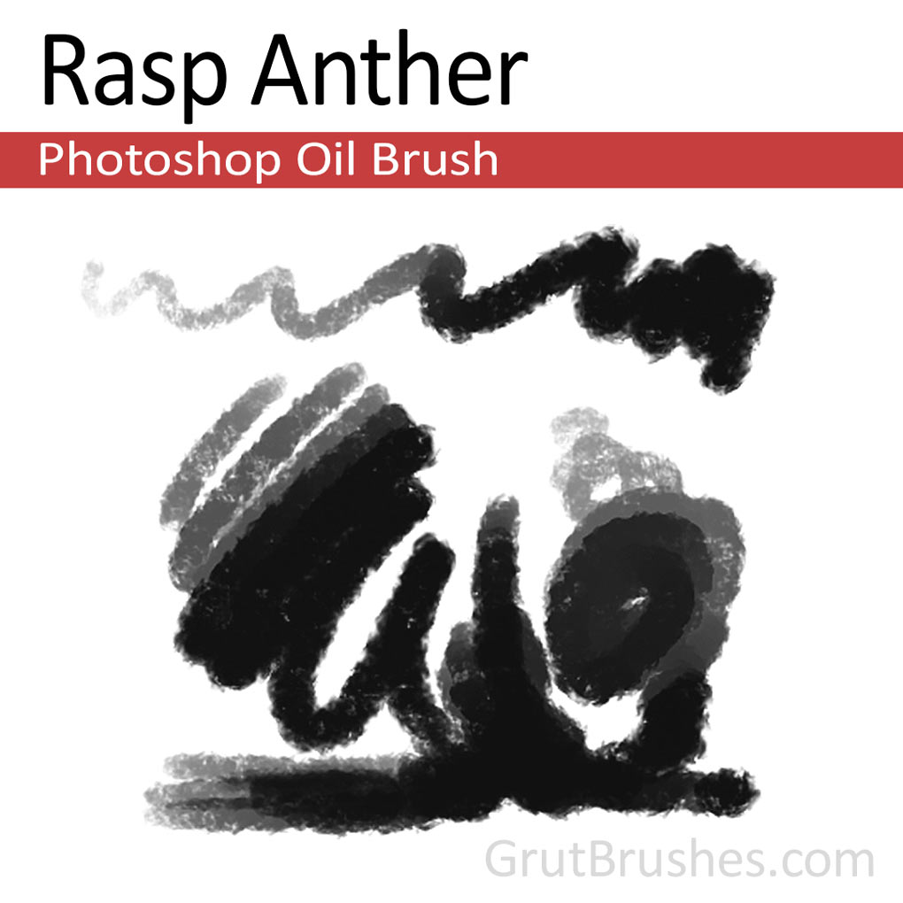 'Rasp Anther' Photoshop oil brush for digital painting