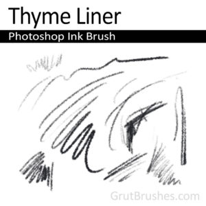 'Thyme Liner' Photoshop Ink Brush for digital artists