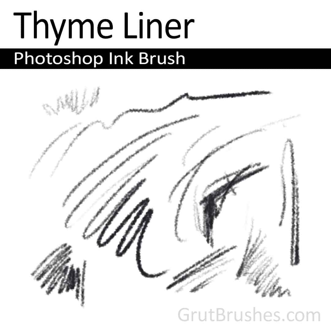 'Thyme Liner' Photoshop ink brush for digital painting