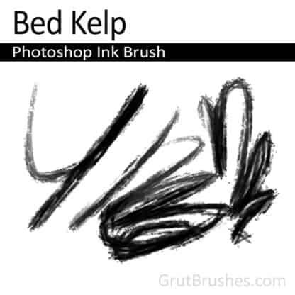 Bed Kelp - Photoshop Ink Brush