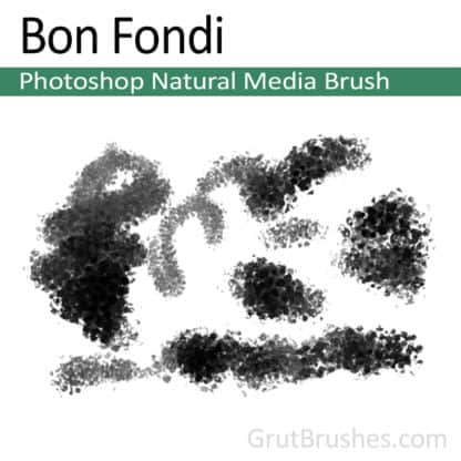 Photoshop Natural Media Brush for digital artists 'Bon Fondi'