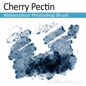 How to Install TPL files ( tpl brushes) into Photoshop
