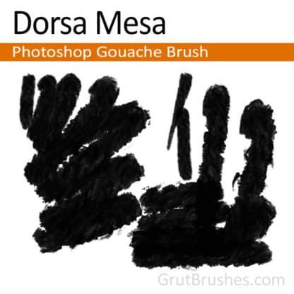 Dorsa Mesa - Photoshop Gouache Brush