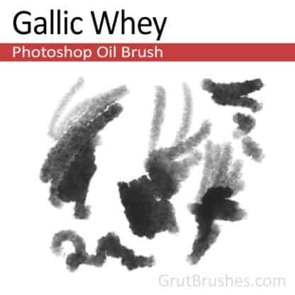 Gallic Whey - Photoshop Oil Brush