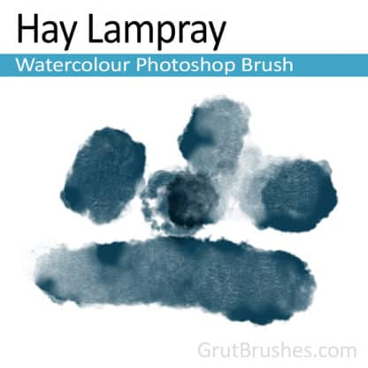 Photoshop Watercolor Brush for digital artists 'Hay Lampray'
