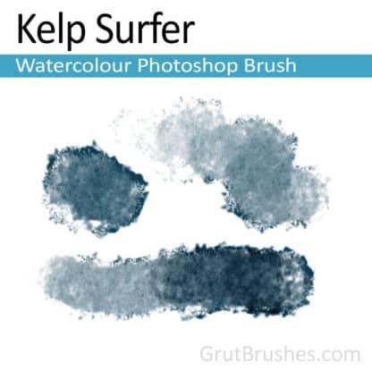Photoshop Watercolour Brush for digital artists 'Kelp Surfer'