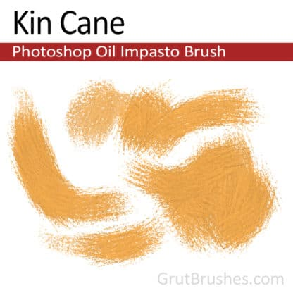 Kin Cane - Photoshop Impasto Oil Brush