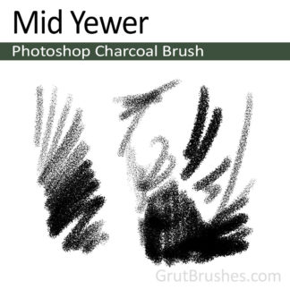 Mid Yewer - Photoshop Charcoal Brush