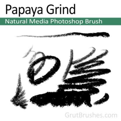 Papaya Grind - Photoshop Pastel Brush