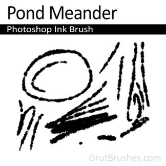 Pond Meander - Photoshop Ink Brush