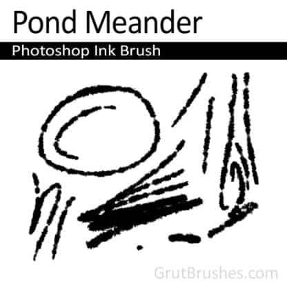 Pond Meander - Photoshop Ink Brush