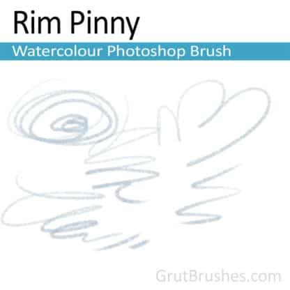 Photoshop Watercolor Brush for digital artists 'Rim Pinny'