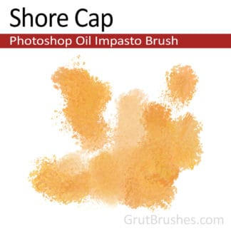 Shore Cap - Impasto Oil Photoshop Brush