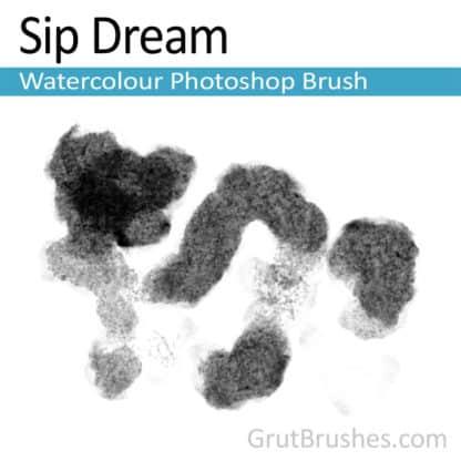 Sip Dream - Photoshop Watercolor Brush