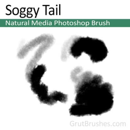 Soggy Tail - Photoshop Natural Media Brush