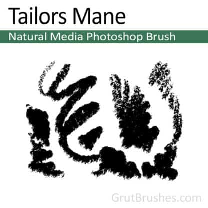 Tailors Mane - Photoshop Pastel Brush