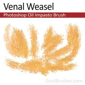 Venal Weasel - Impasto Oil Photoshop Brush