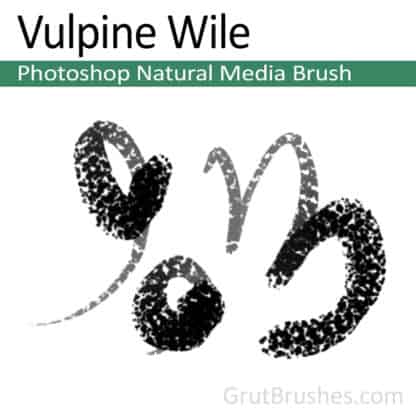 Vulpine Wile - Photoshop Natural Media Brush